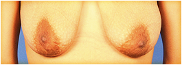 soft breasts photo